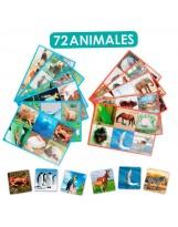 Conjunto asociación 72 animales